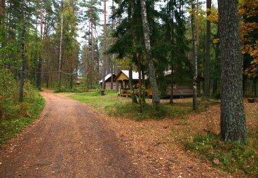 Встреча на тропе здоровья пройдёт в Себежском национальном парке